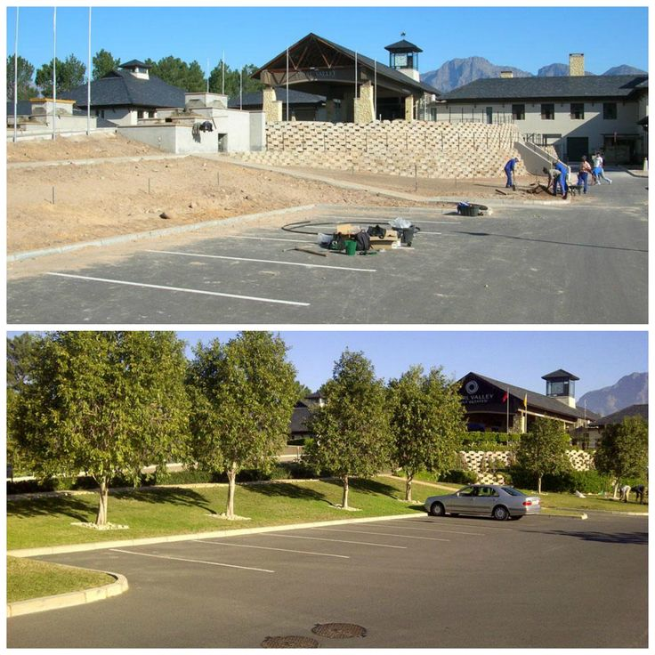 This before and after from our project in 2006 at the Pearl Valley Golf Club just shows how trees can really change a space! We worked with Ryan du Plessis from Pearl Valley Golf Club and planted Syzygium guineense (Water Pear) to create a tall and attractive avenue and screen...