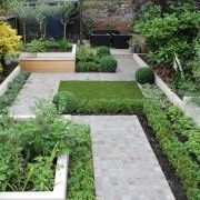 Contemporary Garden in St Margarets