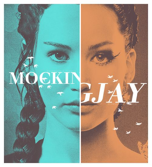 Mockingjay | Catching fire