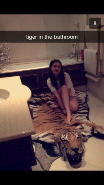 Is your rug even endangered, bro? | 17 Times The Rich Kids Of Snapchat Ruined Everything