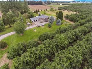 Saint Paul, Marion County, Northwest, OR Land For Sale - 98.49 Acres