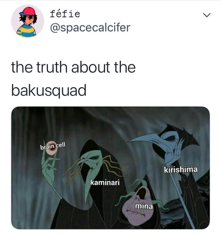 basically they share one brain cell |bakusquad-bnha ...
