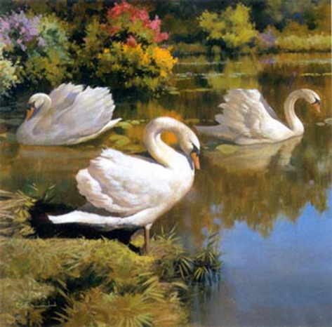 106 Best A Swanz Art Images On Pinterest Birds Swans