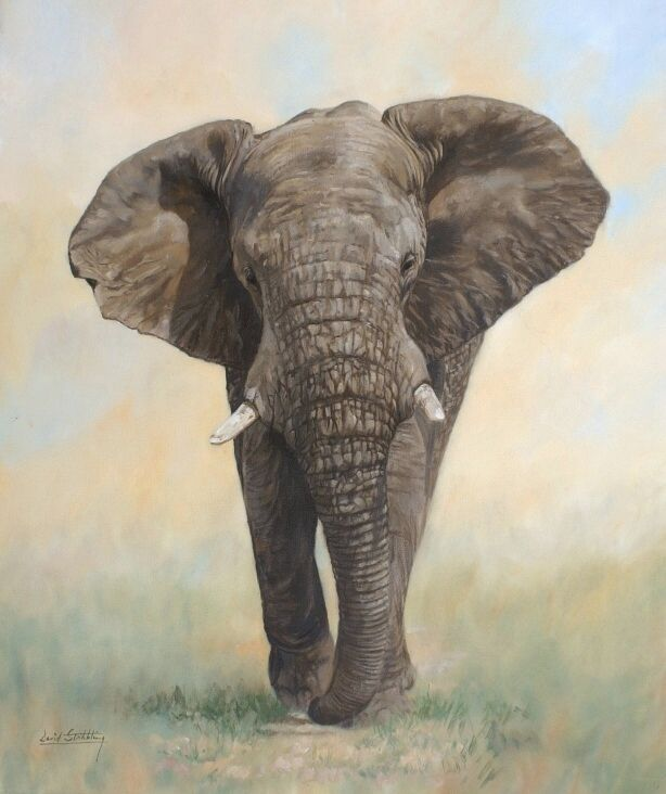66 best Paintings elephants images on Pinterest | Animal ...