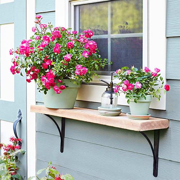 Simple and stylish, two decorative metal shelf brackets support a stained pine board to create a multi-tasking ledge. This flower pot shelf can serve as a potting surface, provide outdoor shelf space, and display your best arrangements.