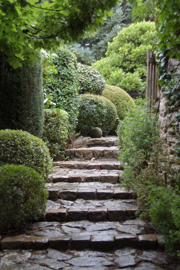 la louve - Variegated greens and curvaceous shapes transitions more formal topiary with nature as one moves up the stairs.