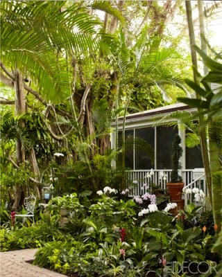 27 best images about south florida historical houses on for Beach house landscaping plants