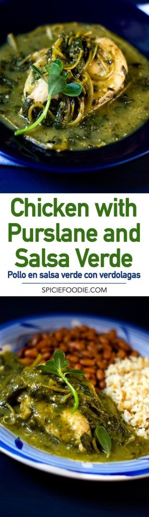 Mexican recipe for #chicken with #purslane greens and cooked in #salsa verde ( pollo en salsa verde con verdolagas)
