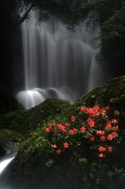 Kuwanoki Waterfall, Shingu, Wakayama, Japan repinned from Carla Spangler Keys onto Pretty places