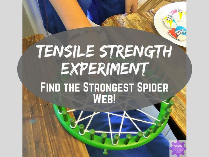 Experiment with ultimate tensile strength, a materials science concept! Using spider painted rocks, find the strongest web material!