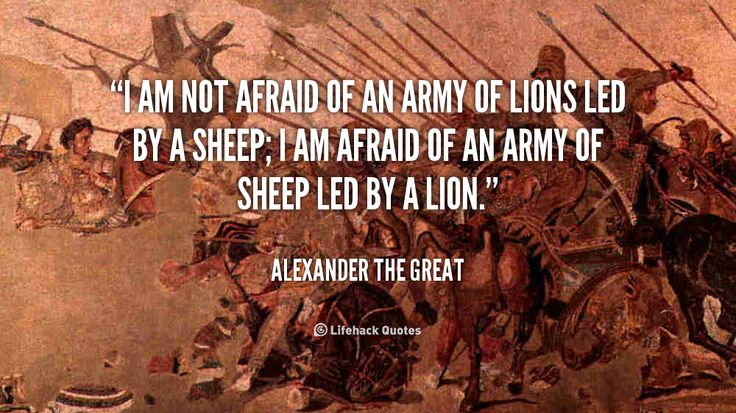 I am not Afraid of an Army of Lions led by a Sheep. – Alexander the Great