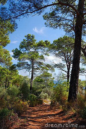 Lycian Way near Kalkan