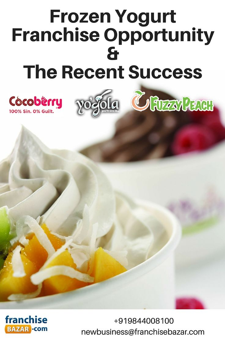 #Frozen #Yogurt #Franchise #Opportunity &  #Success Factors