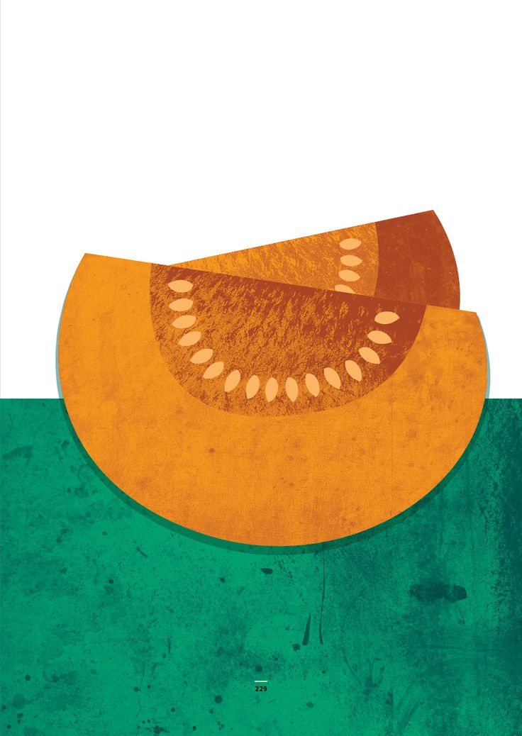 Food illustration for a book published by State Ethnographic Museum in Warsaw. #pumpkin