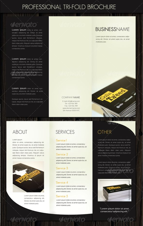 Company Introduction Leaflet Brochure  Tm Vi Google  Th Cn