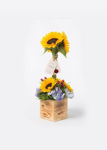 GÜNEBAKAN  El yapımı isli çam kutuda ayçiçeği, mavi ortanca, solidago, kırmızı hypericum. | Bloom and Fresh