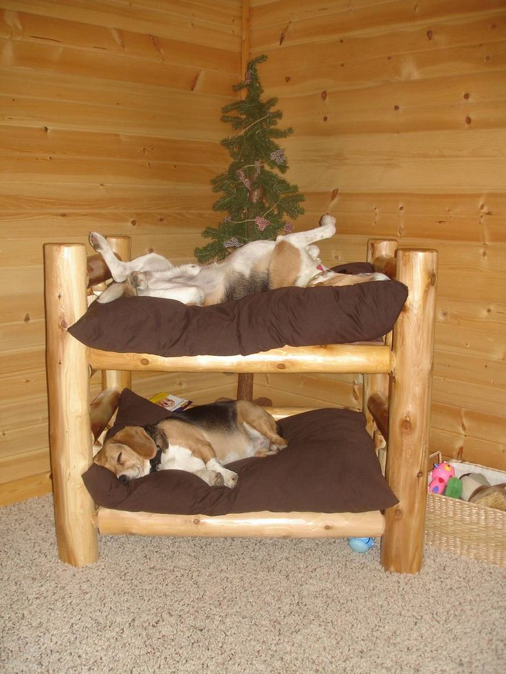 Dog bed...love the toy box nest to the bed and the pine tree behind them.