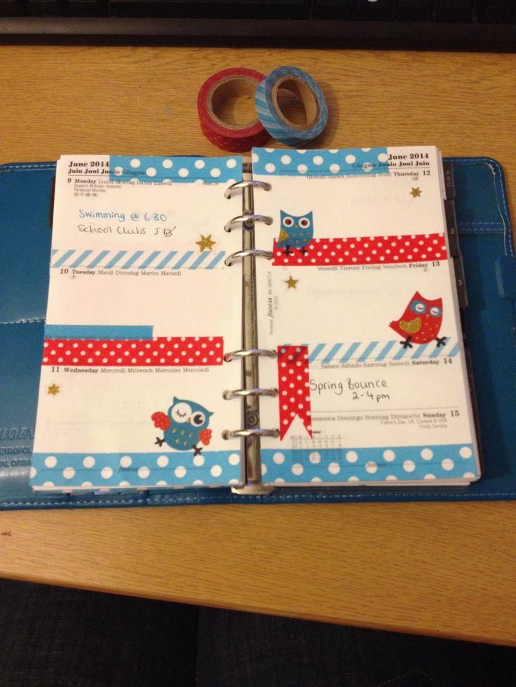 Week 24 in my filofax with cute owl stickers. #filofaxaddict #filofax #planner #washitape