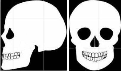 Spline Modeling Tutorial in 3ds Max - 3D Skull Model | Tutorial-Bone-Yard