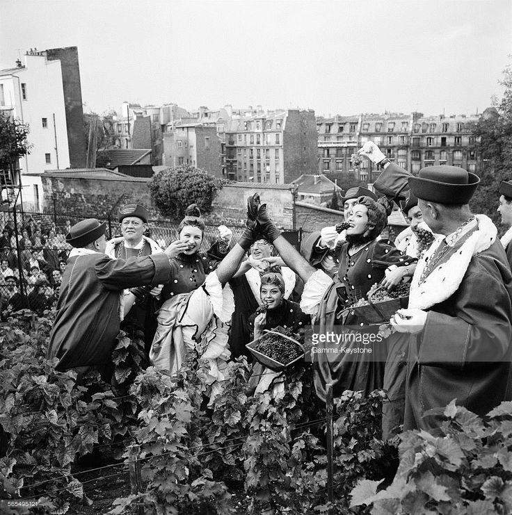 Les danseuses du c�l�bre French Cancan du Moulin Rouge, v�tues du costume folklorique, participent aux vendanges � Montmartre, Paris, France le 28 septembre 1961. (Photo by Keystone-France/Gamma-Rapho via Getty Images)