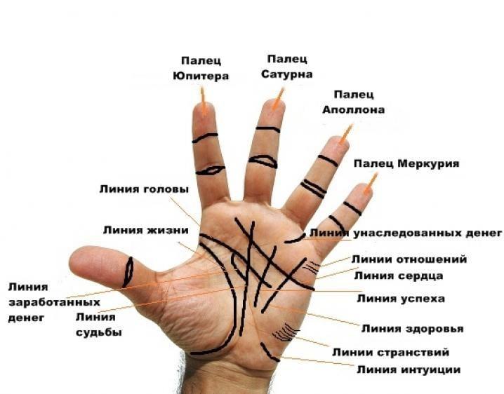 Ставим точку. lifter.com.ua Хиромантия(она же пальмистрия и хирология) практикуется по всему миру. Она берет начало в индийской астрологии и цыганских гаданиях. Цель состоит в том, чтобы определить…