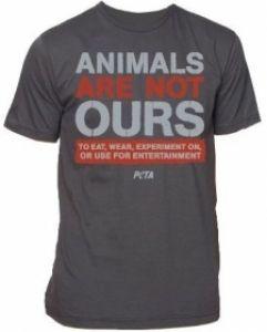 Animal rights ielts