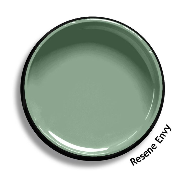 Resene Envy is a watery green, placid and restful. From the Resene Heritage colours collection. Try a Resene testpot or view a physical sample at your Resene ColorShop or Reseller before making your final colour choice. www.resene.co.nz