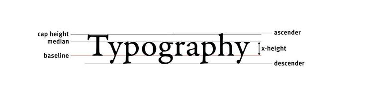 20 Must-Know Typography Terms for Beginners