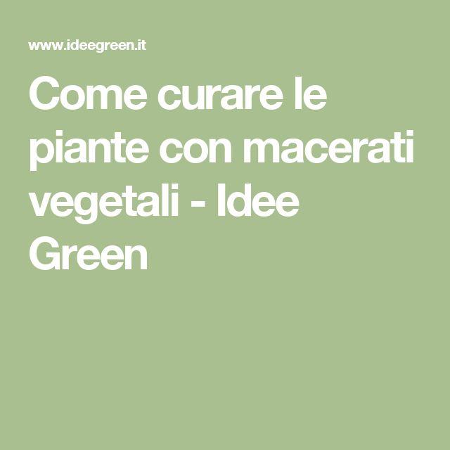 Come curare le piante con macerati vegetali - Idee Green