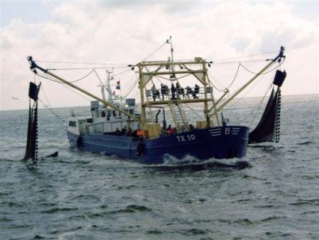 Garnalen vissen op Texel
