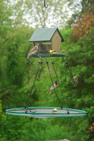 Ce plateau suspendu permet de ramasser les graines que les oiseaux répandent.  De plus, certains oiseaux préfèrent manger à plat, au 'sol', plutôt qu'en mangeoire.