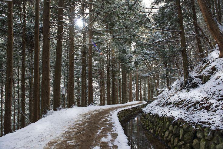 Why you need to visit JAPAN (Part 1) – Cavan Flynn