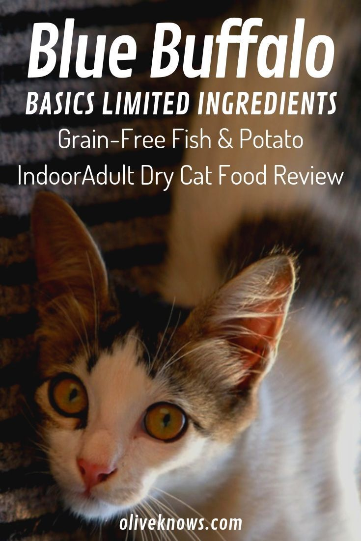 Blue Buffalo Basics Li Grain Free Fish Potato Indoor Adult Dry Cat Food Review Dry Cat Food Cat Food Reviews Cat Food