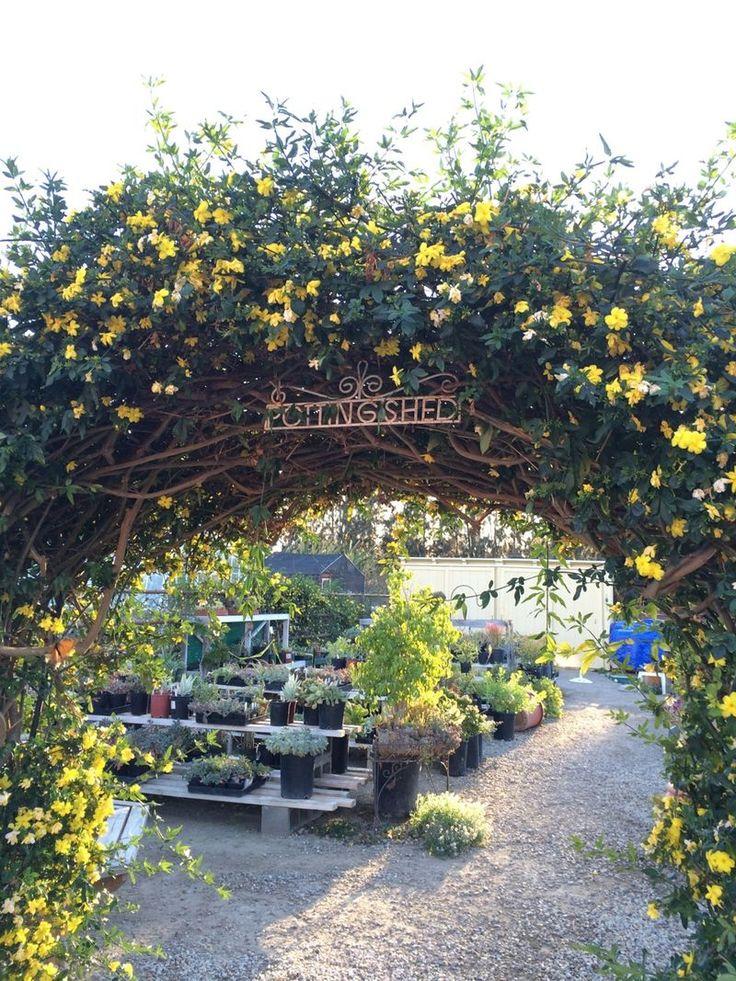 Beautiful arbor, photo from brooke gianetti blog