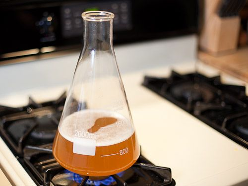 How to make a yeast starter for high alcohol beer. #homebrewing