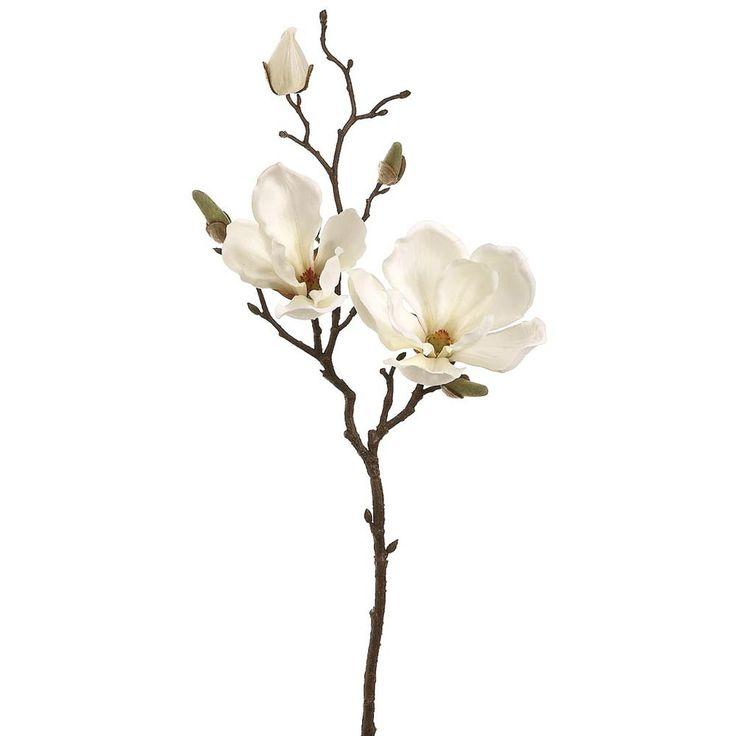 Best magnolia tattoo ideas on pinterest