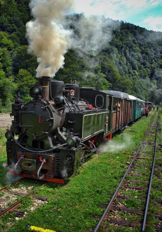 Touristic steam train, Mocanita, Romania. More reasons to visit Romania here: https://www.facebook.com/YouShouldVisitRomania