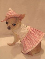 Little Daisy Dog Harness Dress Set - 3 Piece Set includes Dress, Hat and Leash