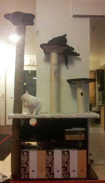 DIY cats scratching post  I used: - old cabinet, took doors away -broken, old scratching post -log -bathroom mat