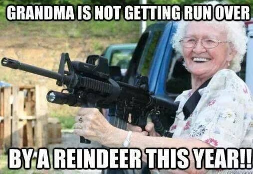 Grandma Is Not Getting Run Over This Year - too funny