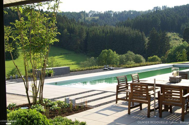 Piscine naturelle en ile de france outdoor gardens swimming pools by co - Construction neuve ile de france ...