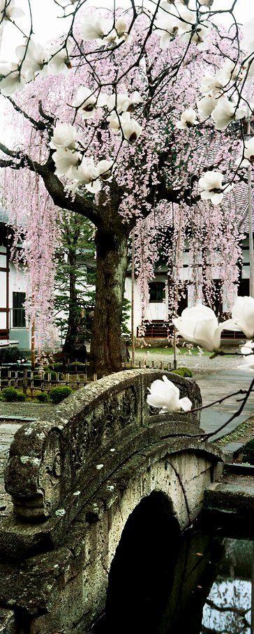 Kozen-ji, Yamagata, Japan (photo by William Corey)