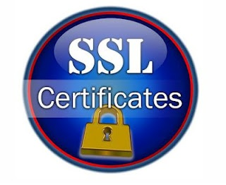 Why Do You Need Web Security Certificate?