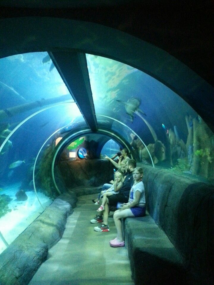 Swim In Gevelsberg 14 best travel ger amusement parks images on
