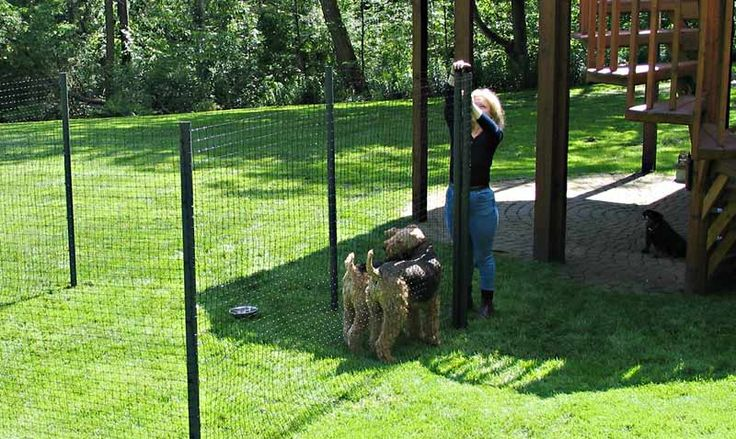 Fencing For Dogs Temporary Outdoor Dog Enclosures I