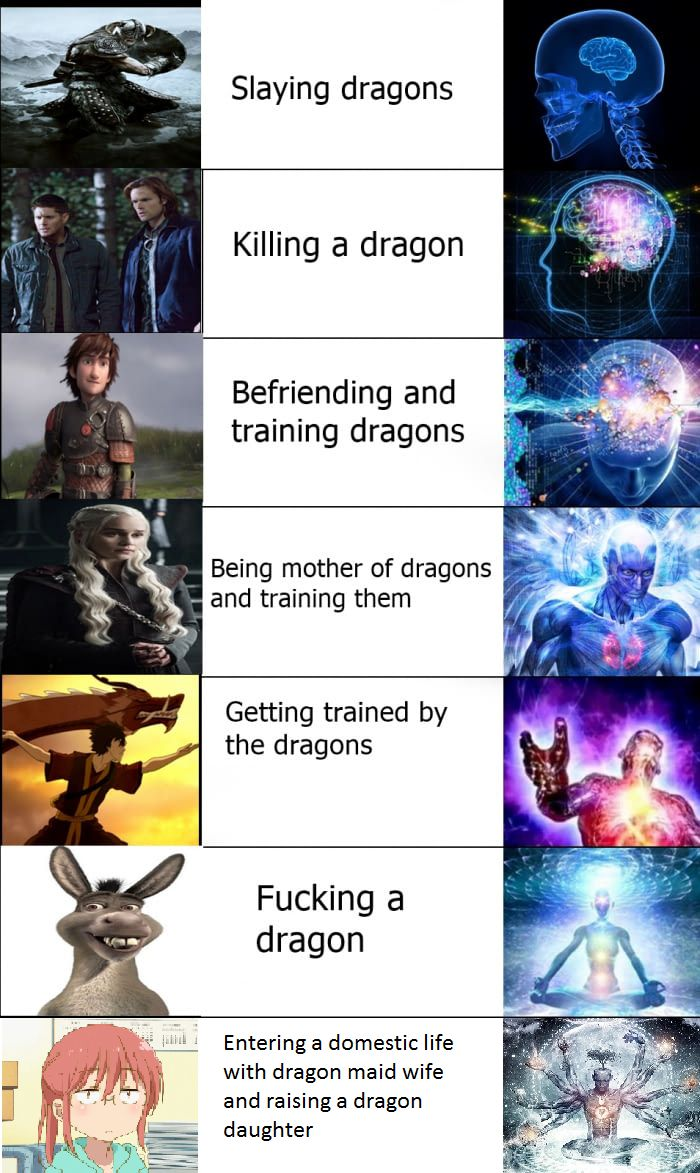 Reaction to dragons   Galaxy Brain   Funny pictures, Brain ...