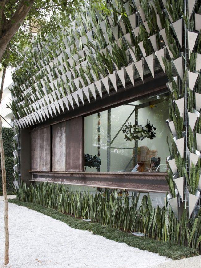 Une maison faite de Sansevieria avec des murs végétalisés mais quelle beauté !