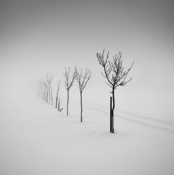 Photos by Martin Rak