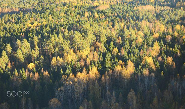 Nature - Finland