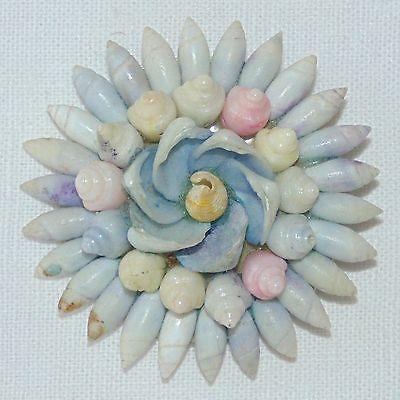 Vintage-tiny-seashell-snail-shell-mandala-mosaic-pin-brooch-blue-pink-yellow
